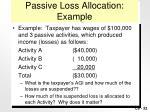 passive loss allocation example