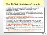 the at risk limitation example