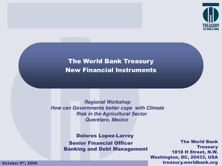 the world bank treasury new financial instruments n.