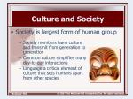 culture and society1