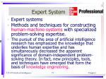 expert system1