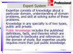 expert system2