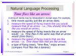 natural language processing2