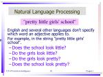 natural language processing3