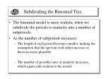 subdividing the binomial tree