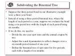 subdividing the binomial tree1