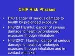 chip risk phrases1