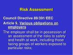 risk assessment1