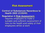 risk assessment3