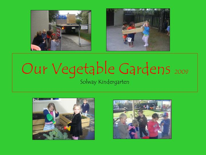 our vegetable gardens 2009 solway kindergarten n.