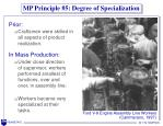 mp principle 5 degree of specialization