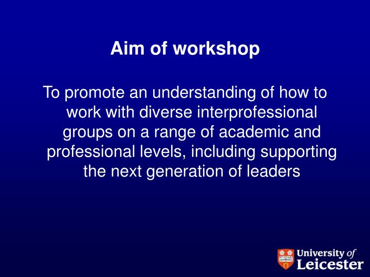 aim of workshop n.