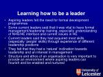 learning how to be a leader