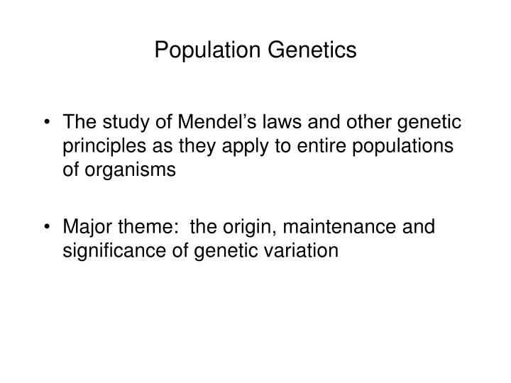 population genetics n.