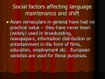 social factors affecting language maintenance and shift