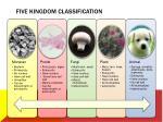 five kingdom classification