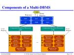 components of a multi dbms