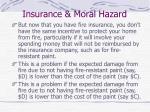 insurance moral hazard