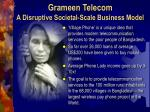 grameen telecom a disruptive societal scale business model