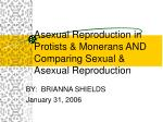 asexual reproduction in protists monerans and comparing sexual asexual reproduction