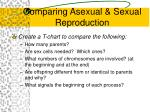 comparing asexual sexual reproduction