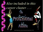 also included in this career cluster