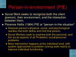 person in environment pie