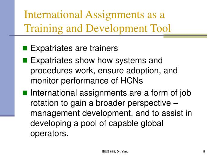 International Assignments as a Training and Development Tool