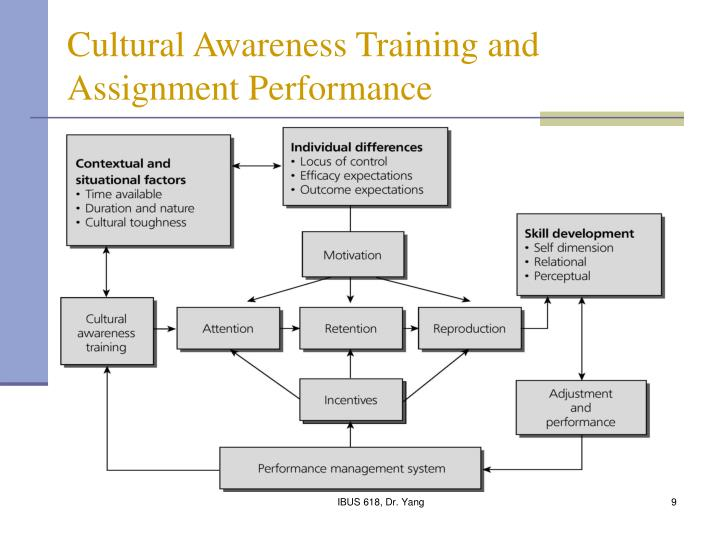 Cultural Awareness Training and Assignment Performance