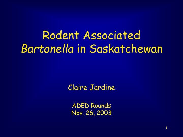 rodent associated bartonella in saskatchewan n.