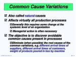 common cause variations