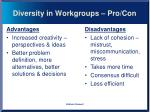 diversity in workgroups pro con