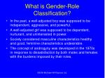 what is gender role classification