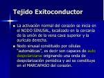 tejido exitoconductor