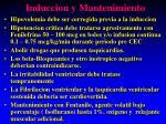 induccion y mantenimiento