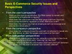basic e commerce security issues and perspectives