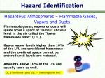 hazard identification1