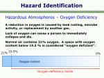 hazard identification3