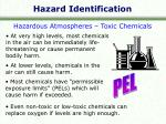 hazard identification6