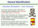hazard identification7
