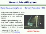 hazard identification9
