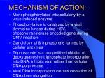 mechanism of action3
