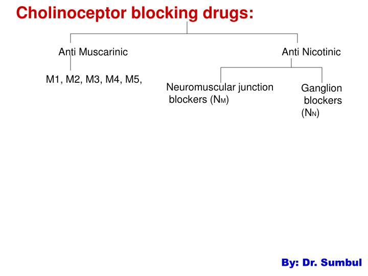 cholinoceptor blocking drugs n.