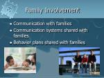 family involvement1
