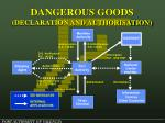 dangerous goods declaration and authorisation