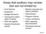areas that auditors may review but are not limited to