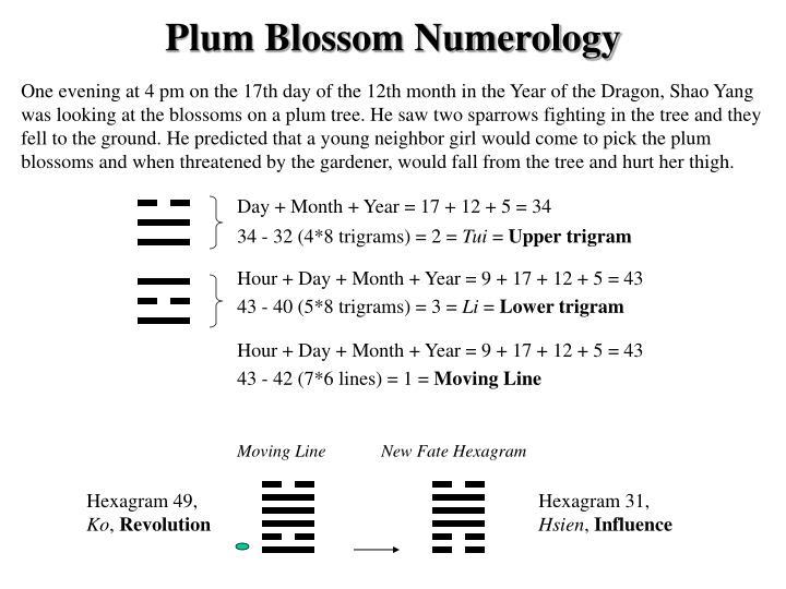 Plum Blossom Numerology
