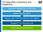 hp openview momentum and leadership