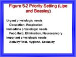 figure 5 2 priority setting lipe and beasley
