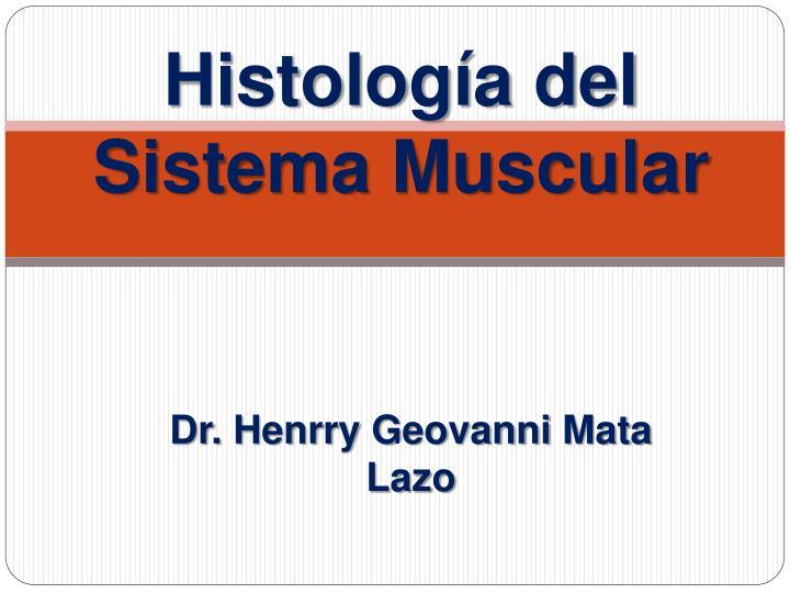 histolog a del sistema muscular n.